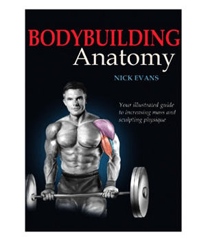 Bodybuilding-Anatomie-by-nick-evans