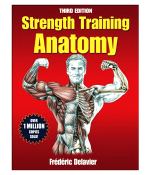 de treinamento de força-anatomia