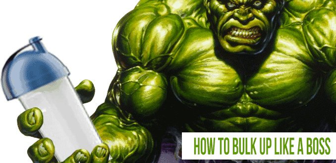 how to bulk up properly
