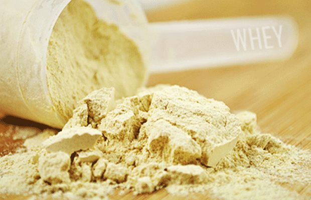 whey-protein-powder-source-for-bodybuilders