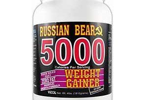 ویتول و روسیه-خرس-5000-وزن-کننده