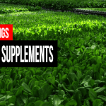 Best Green Supplements for 2016 — Top 10 Greens Products