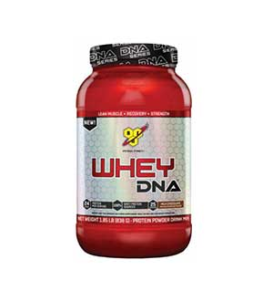 bsn-whey-dna-review