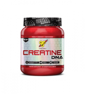 BSN-kreatiini-dna-review