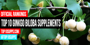 best-ginkgo biloba-integratori--to-buy