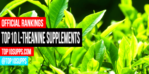 best-l-theanine-supplements-you-can-can-buy