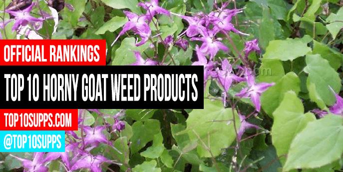 produk mesra-kambing-rumpai-terbaik-untuk-beli