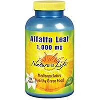 Natuur Lewe Alfalfa Leaf