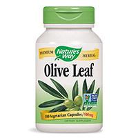 Luonnon tapa oliivilehtiuute