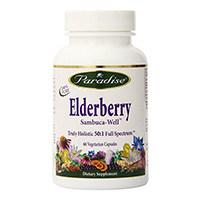 Paradise მწვანილი Elderberry