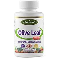 Paradise Kräuter Olive Leaf
