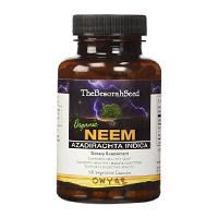Ο σπόρος Besorah Βιολογική Neem
