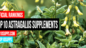 best-Astragalus-συμπληρώματα-you-can-buy-δεξιά-τώρα