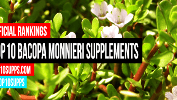 best-Bacopa-Monnieri-to-buy-this-Jahr