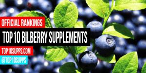 pinakamahusay na-Bilberry-supplements-to-bumili-this-taon