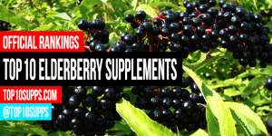 pinakamahusay na-Elderberry-supplements-on-the-market-right-ngayon