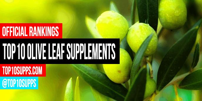 Best Olive Leaf Supplements - Top 10 Brands Reviewed for 2019