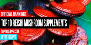 Paras-Reishi-sieni-täydentää-you-can-ostaa-tämä vuoden
