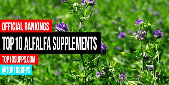 best-alfalfa-supplements-to-buy-this-year