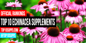 best-echinacea-integratori-you-can-acquistare-destra ora