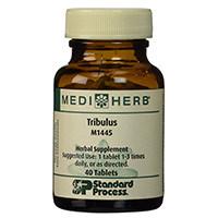 Mediherb Tribulus