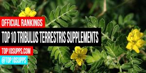 tốt nhất-Tribulus-Terrestris-bổ-bạn-có thể mua này năm