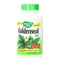 Way Goldenseal Herb Nature