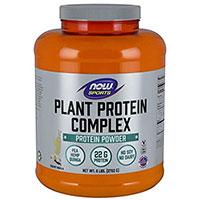 이제 음식 식물 단백질 복합체