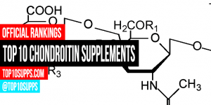 best-Chondroitin-supplements-on-the-market