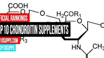 terbaik-Chondroitin-tambahan-on-the-pasaran