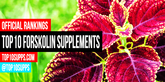 best-Forskolin-suplementos-on-the-market