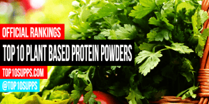 best-plant-based-protein-powder-on-the-market-today