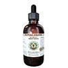 HawaiiPharm Magnolia Alcohol-FREE Liquid Extract-s