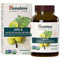 Himalaya Organic Amla