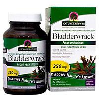 Natures Answer Bladderwrack Thallus
