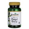 Swanson Full Spectrum Maqui Berry-s