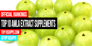 best-Amla-Extract-supplements-on-the-market