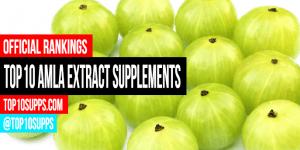 pinakamahusay na-Amla-Extract-supplements-on-the-market