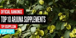 best-Arjuna-supplements-on-the-market