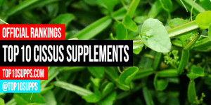 best-Cissus-quadrangularis-integratori-on-the-mercato