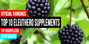 pinakamahusay na-Eleuthero-supplements-on-the-market