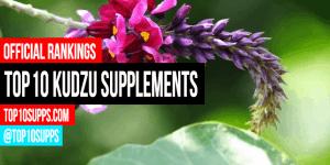 best-kudzu-suplimente-on-the-piață