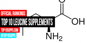best-Leucine-Supplements-on-the-market