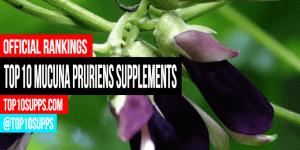 най-добри Mucuna-pruriens-добавки он дъ-пазар