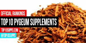 best-Pygeum-supplements-on-the-market