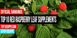 най-добрите-червен-малинови листа-добавки-за-на-пазара