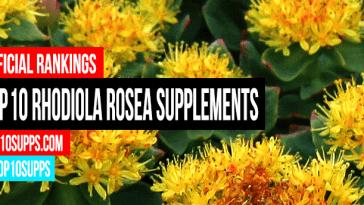 terbaik Rhodiola Rosea--tambahan-on-the-pasaran