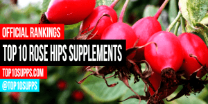 best-Rose-Hips-supplements-on-the-market