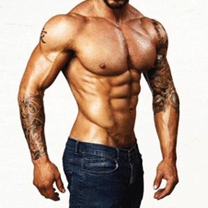 Melhores suplementos para musculação